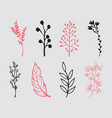 set of vintage ornaments with floral elements for vector image vector image