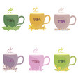 a set of tea made from herbs mint lemon balm vector image