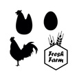 Chicken and Farm emblems vector image vector image