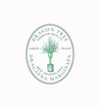 dragon tree plant badge or logo template hand vector image vector image