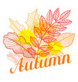 floral background with stylized autumn foliage vector image vector image