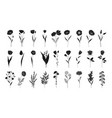 floral set hand drawn flowers silhouettes vector image