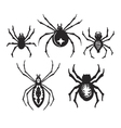 Halloween Spiders vector image