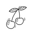 hand drawn doodle cherry icon for backgrounds vector image vector image