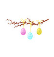 painted easter eggs hanging on pussy-willow branch vector image