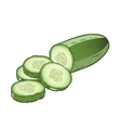 Sliced cucumber vector image vector image