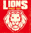 vintage lion mascot vector image vector image