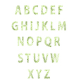 Texture flower font vector image