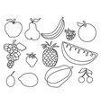 abstract fruits one line drawing design vector image vector image