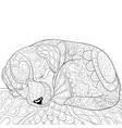 adult coloring bookpage a sleeping little dog vector image vector image