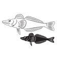 icefish vector image vector image