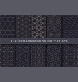 luxury seamless ornamental patterns - geometric vector image vector image