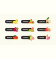 bundle of labels with delicious sweet fresh juicy vector image vector image