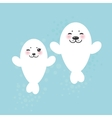 card design Funny white fur seal pups cute vector image vector image