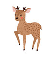 cute hand drawn deer isolated on white vector image vector image
