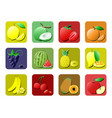 fruit icon set flat icon colorful gradient style vector image