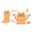 red-headed cat character of a red kitten in vector image