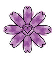 cute flower with heart isolated icon vector image vector image