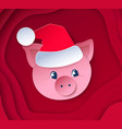cute funny new year pig vector image vector image