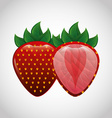 delicious fruit vector image vector image