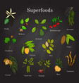 set of hand drawn superfood acai goji cacao vector image vector image