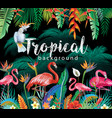 tropical flowers leaves flamingoes and parrots vector image vector image