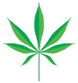 cannabis leaf2 resize vector image vector image