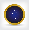 crux constellation in golden circle vector image vector image