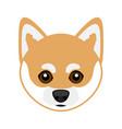 cute shiba inu dog avatar vector image vector image