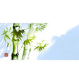 green bamboo on blue sky background traditional vector image vector image