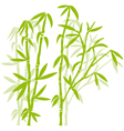 green bamboo trees vector image vector image