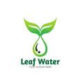 leaf water fresh logo designs vector image