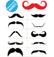 Mustache madness vector image vector image