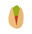 product walnut pistachio icon vector image