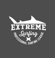 vintage surfing label badge and emblems vector image vector image