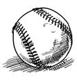 Baseball sketch vector image