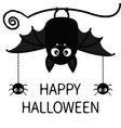 happy halloween spiders insect hanging cute