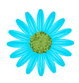 Light Blue Daisy Flower on White Background vector image vector image