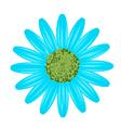 Light Blue Daisy Flower on White Background vector image vector image