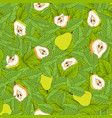 pattern of leaves and pear vector image