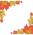 postcard with colorful autumn leaves frame of vector image vector image