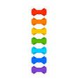 rainbow bow vector image vector image