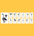 the calendar 2020 ducks and geese vector image