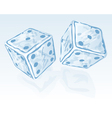 Two ice dices vector image vector image