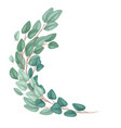 frame with flat hand drawn eucalyptus populus and vector image vector image