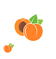 Peach Abstract fruit on white background vector image vector image