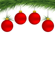 Red Christmas balls on pine branch vector image