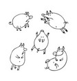 set of funny cartoon pigs coloring page book vector image