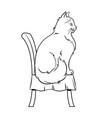 female cat sits on chair coloring book vector image