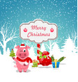 funny pig wearing santa hat with christmas gift vector image